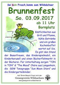 Flyer Brunnenfest 2017